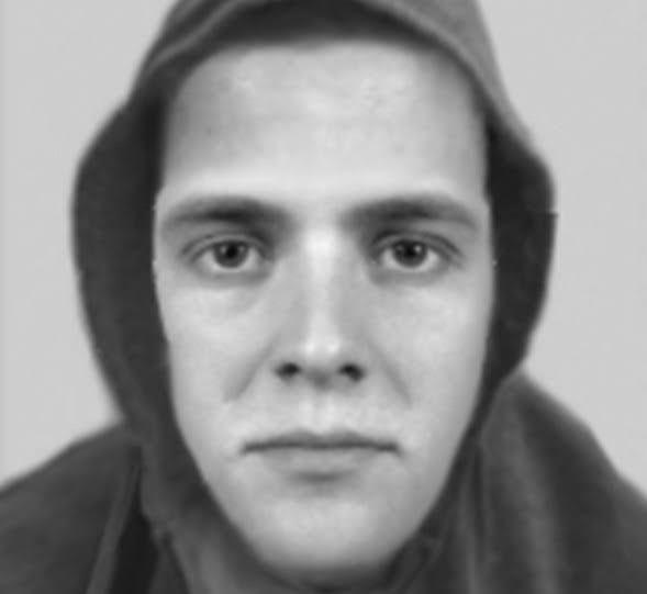 E-fit released in search for sex attacker