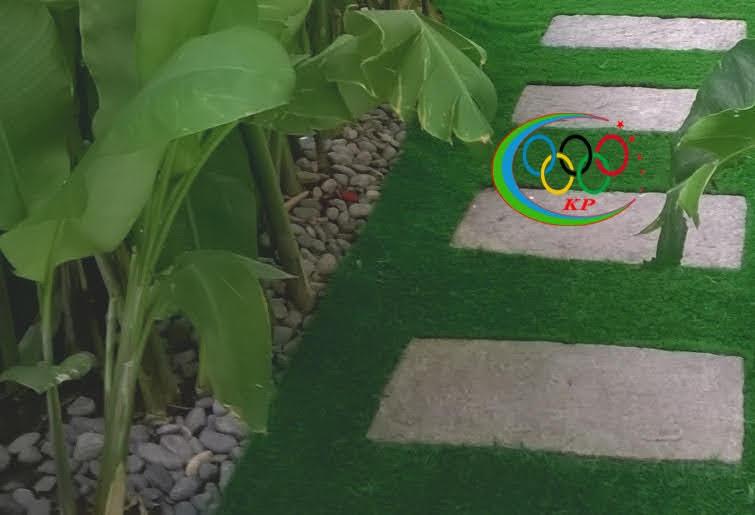 Thảm cỏ nhựa nhân tạo phổ biến Mẫu  hiện nay như ra sao