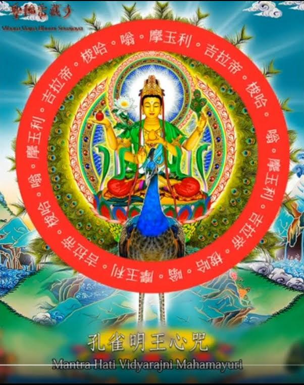 Suara Mantra Maha Mayuri