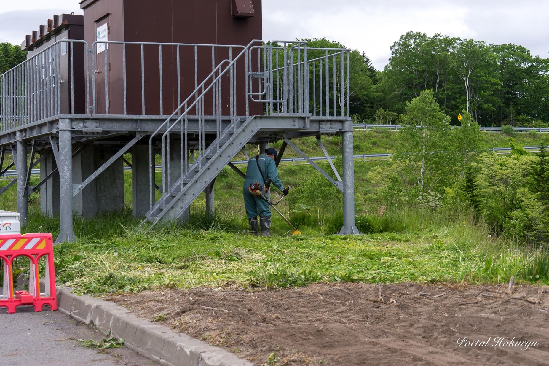 駐車場の施設の草刈り