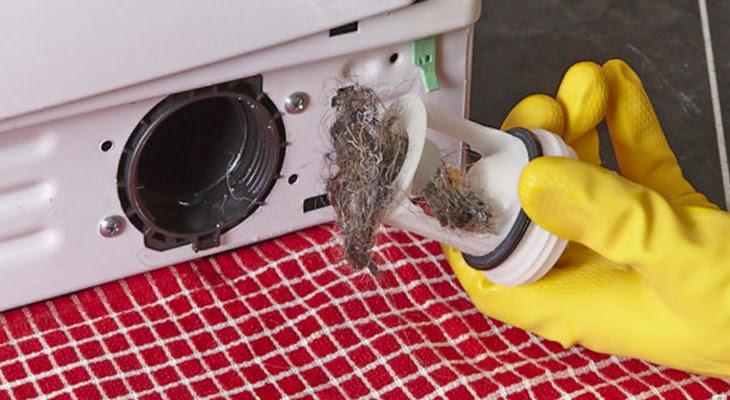 dị vất bán vào bộ lọc máy giặt