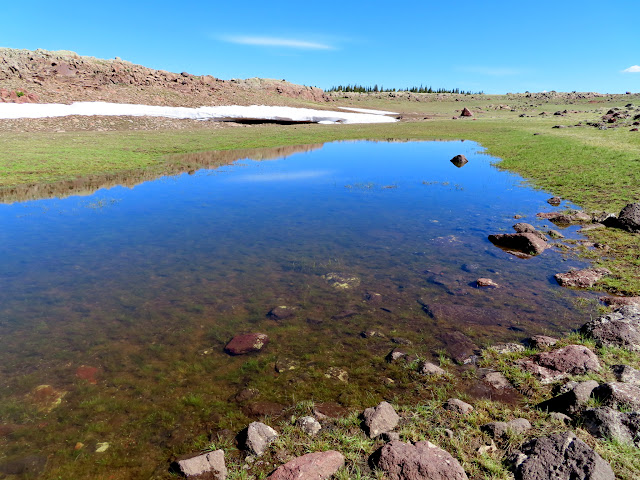 Unnamed pond east of Jane Lake