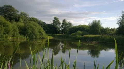 Green Flag Award for Welshpool reserve