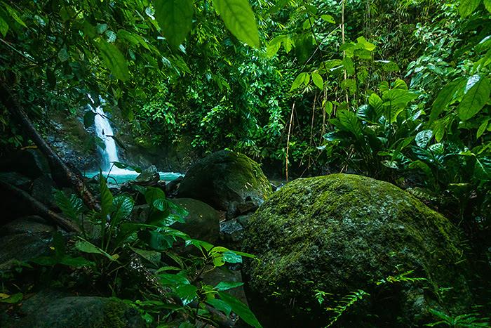 Cascada Verde, Uvita, Costa Rica