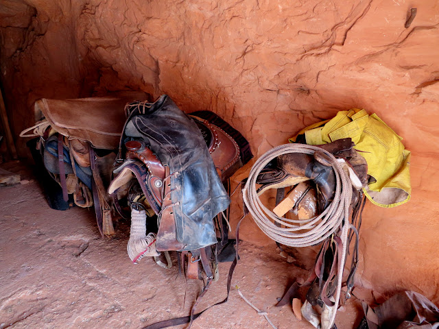 Saddles and gear
