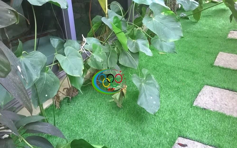 Cỏ nhân tạo sân vườn làm sân chơi cho nhi đồng vui đùa
