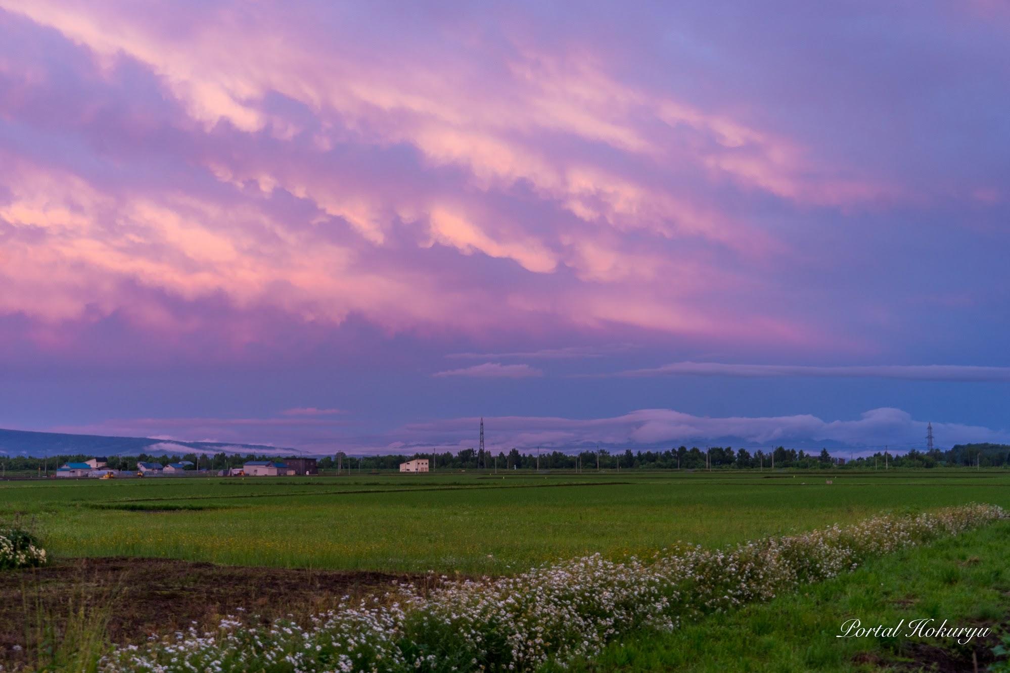 ピンクに滲む夕暮れの空