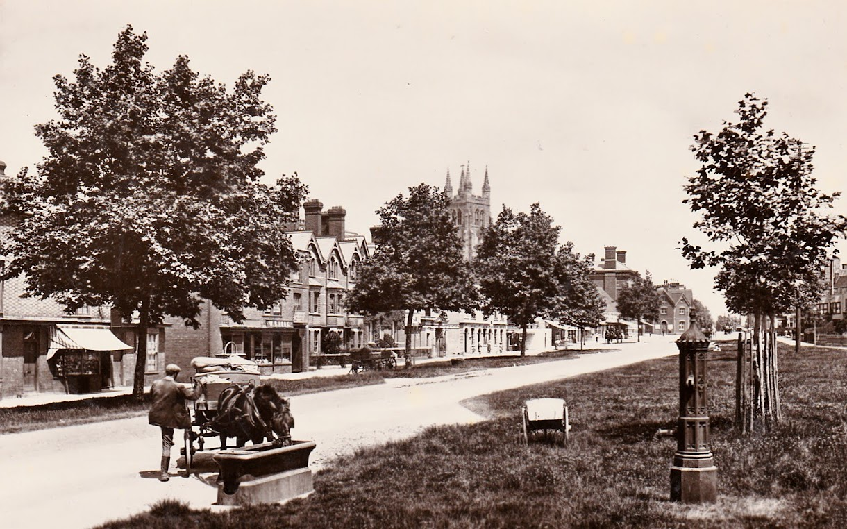 Water trough on the Greens in Tenterden High Street postcard postmarked 1918