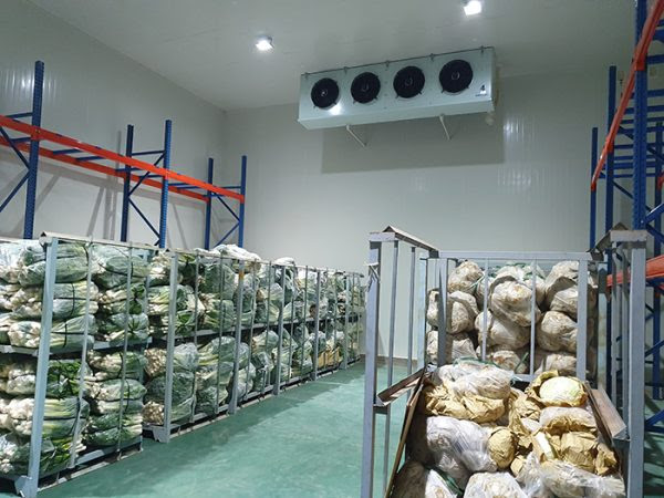 lắp đặt kho lạnh nông sản giúp lưu trữ được nhiều nông sản hơn