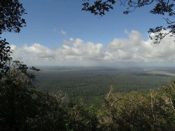 Reservas de Mata Atlântica da Costa do Descobrimentos