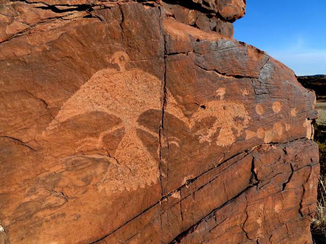 Bird petroglyphs