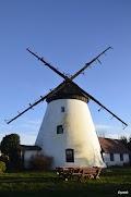 holenderski wiatrak wLędzinie