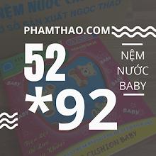 Nem nuoc Ngoc Thao 52x92cm