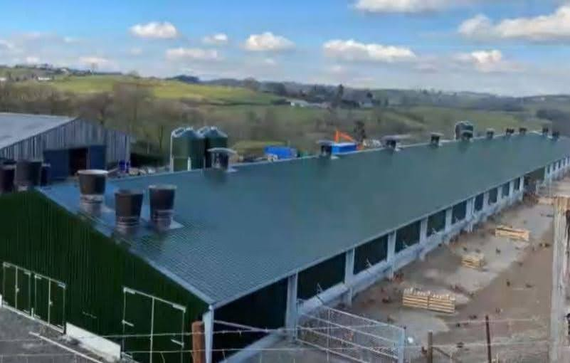 Chicken shed approved after planning breaches
