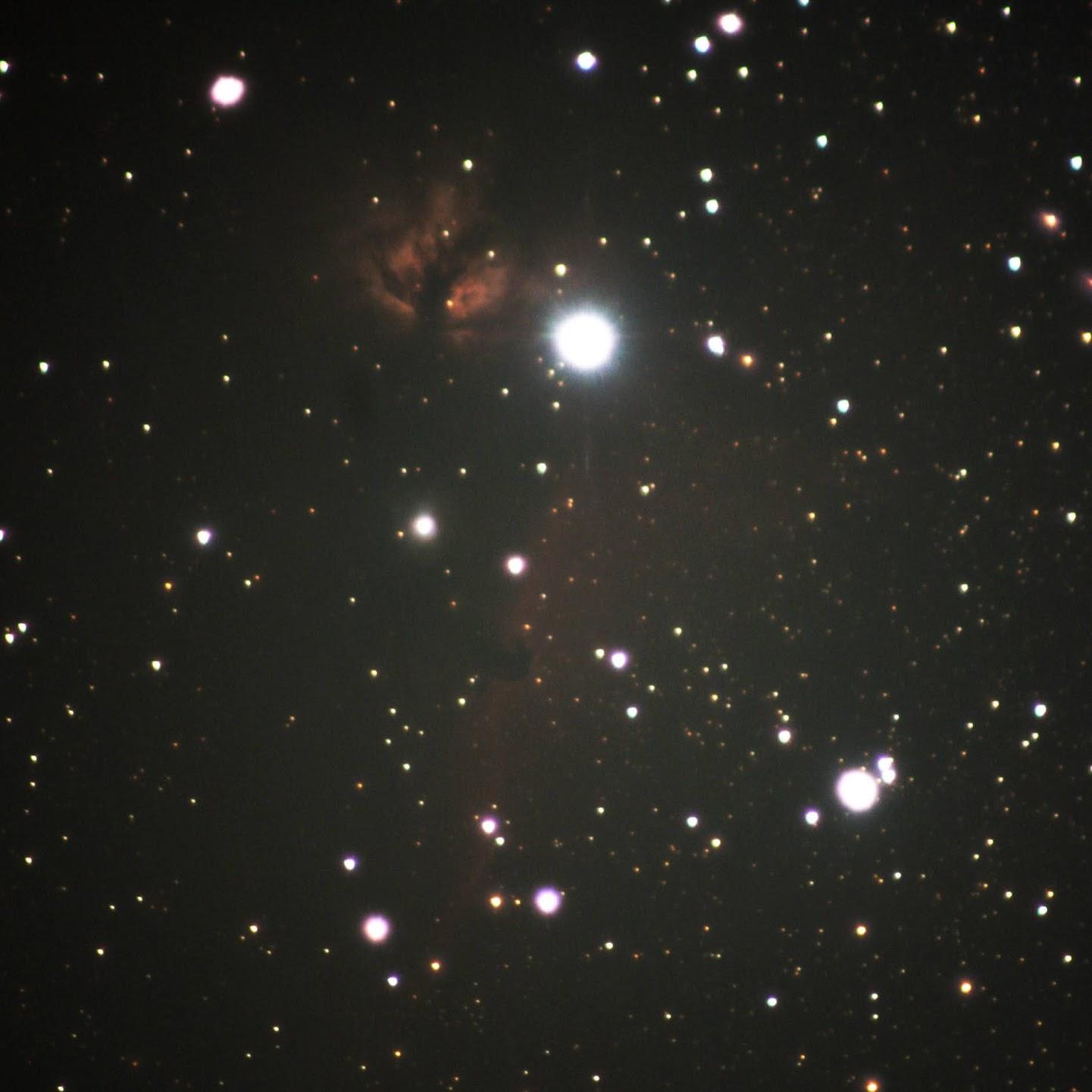 オリオン座の「馬頭星雲」と「燃える木」