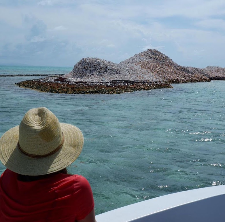 Conch Island, uma ilha sendo construída com conchas