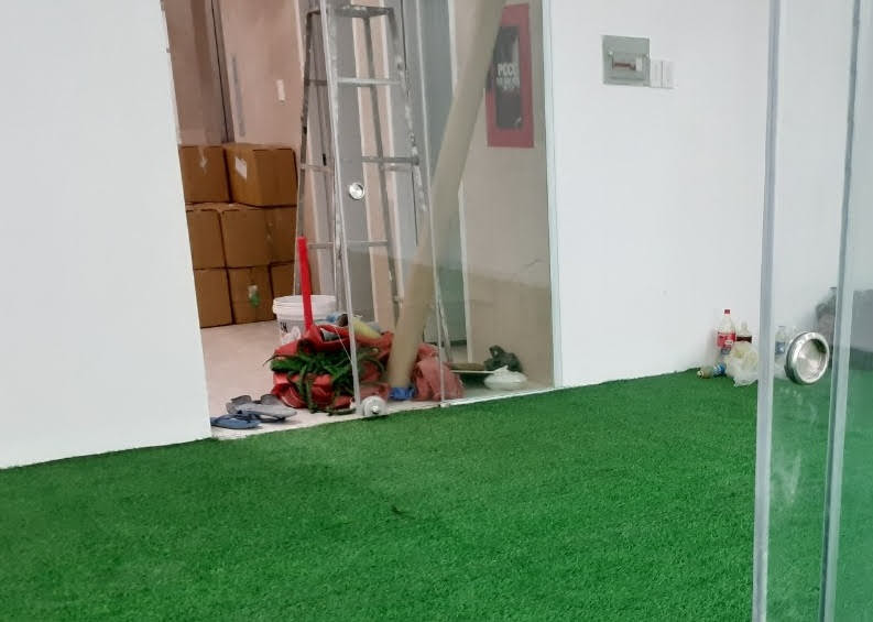 Thảm sân vườn với nhiều tiện lợi thiết yếu hiện nay