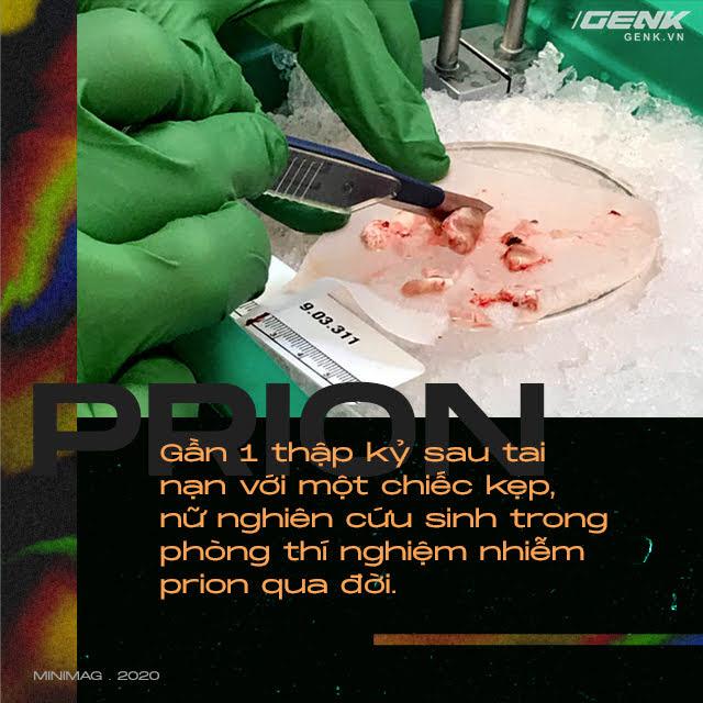 Những cái chết thầm lặng vì nhiễm prion: Phân tử thây ma âm thầm biến não bộ thành bọt biển - Ảnh 8.