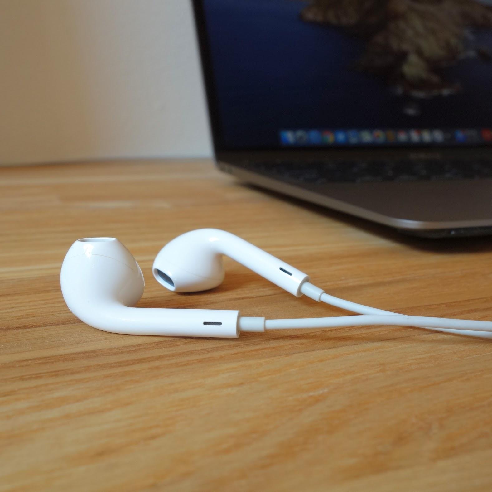 EarPods レビュー 写真
