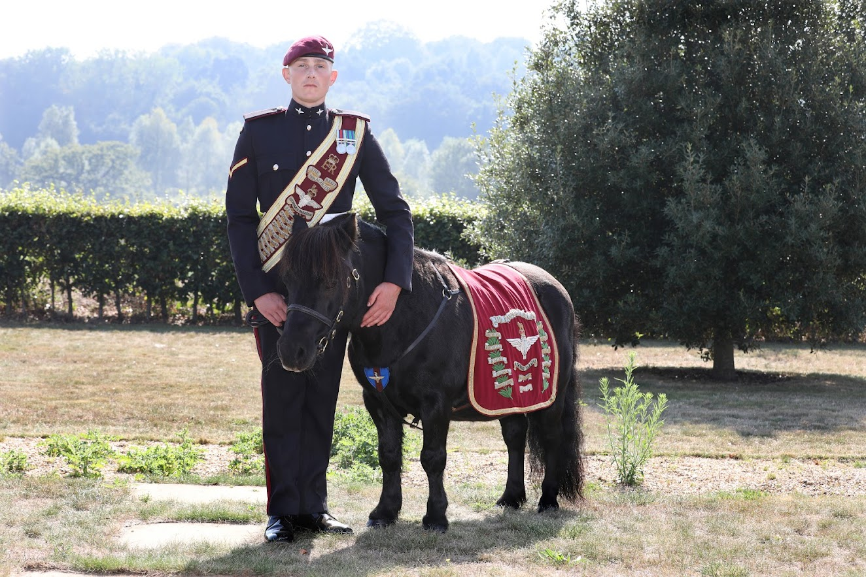 Pegasus with the Pony Major