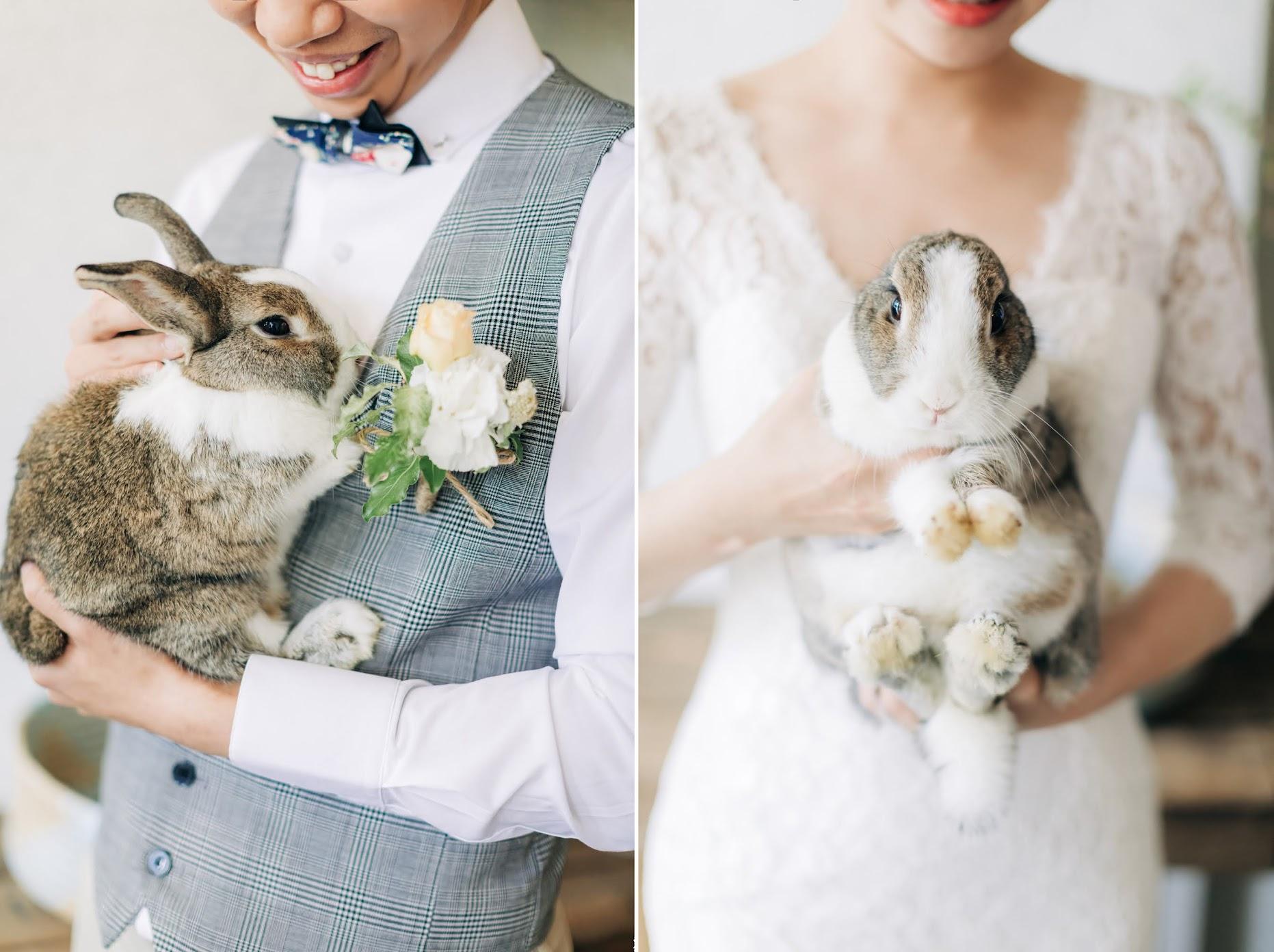 寵物婚紗兔子篇 | Fish + Wolf Engagement | 毛小孩婚紗 - 美式風格婚紗