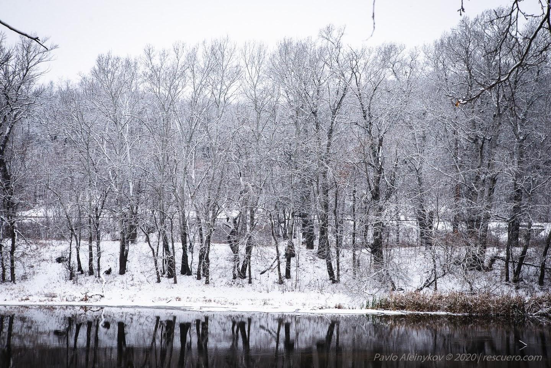 Зимовий Донець