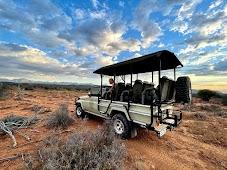 Сафари в Karoo