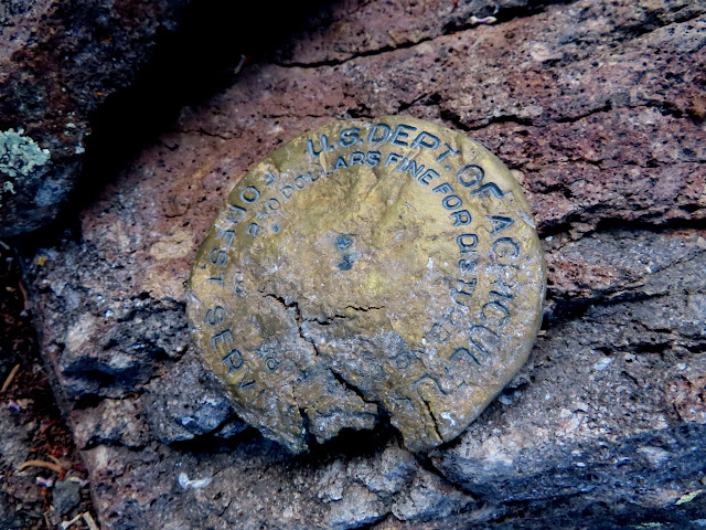 Badly damaged USFS survey marker at Bowns Point