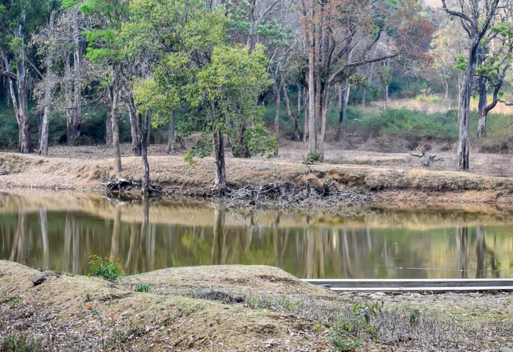 Kyathdevaraya Gudi Wilderness Camp br hills karnataka.jpg