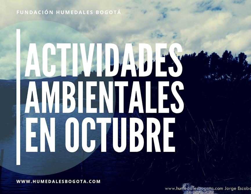 Actividades ambientales en octubre