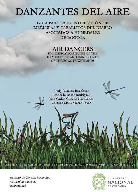 Guía danzantes del aire