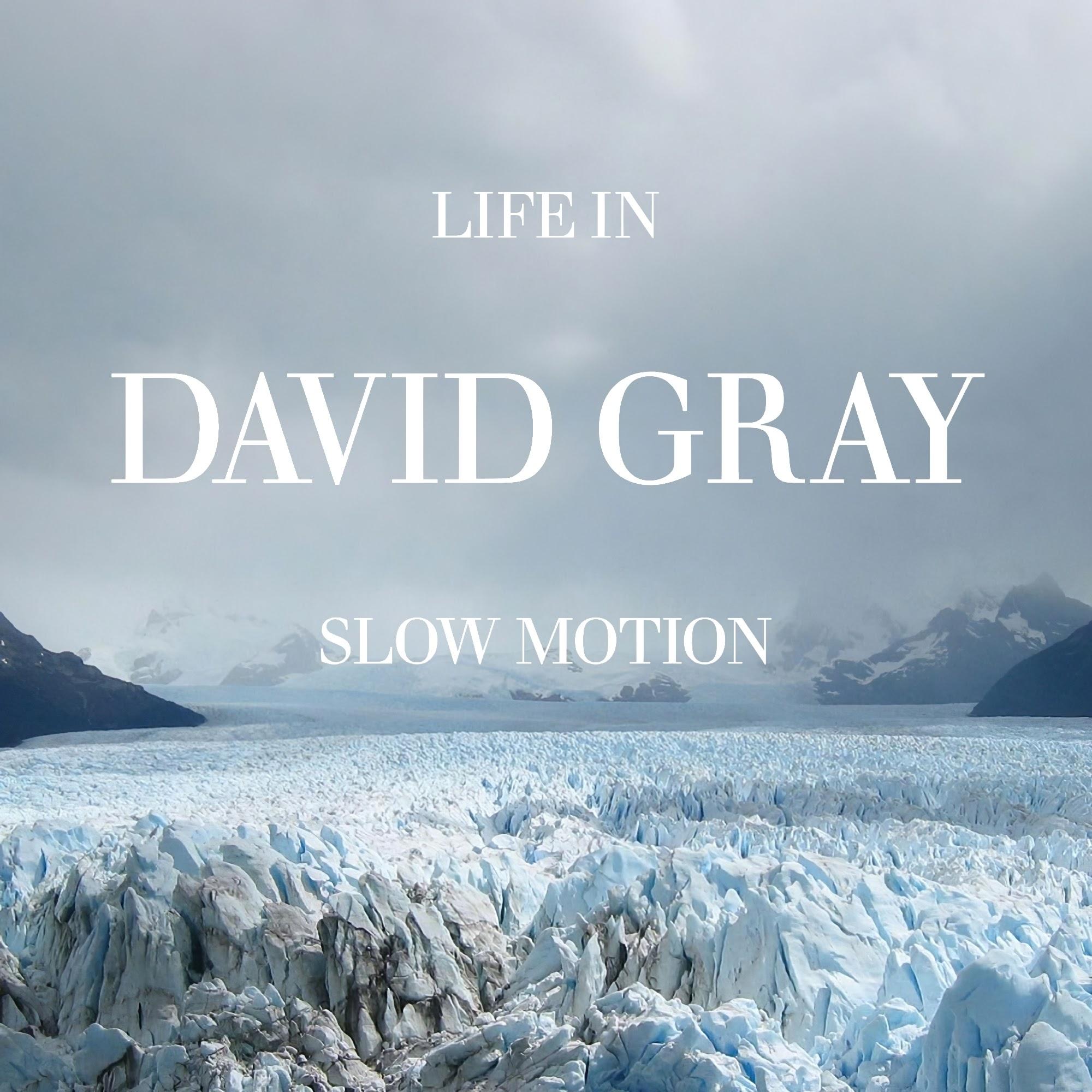 Album Artist: David Gray / Album Title: Life in Slow Motion