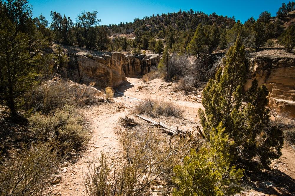 Willis Creek