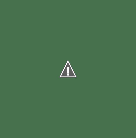 ANSES: NO SERÁ NECESARIO PRESENTAR LIBRETAS