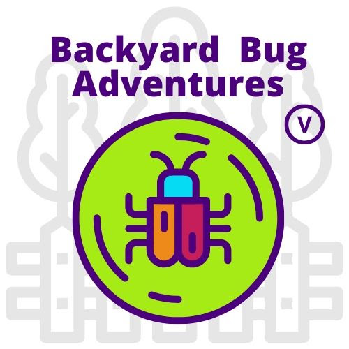 Backyard Bug Adventures