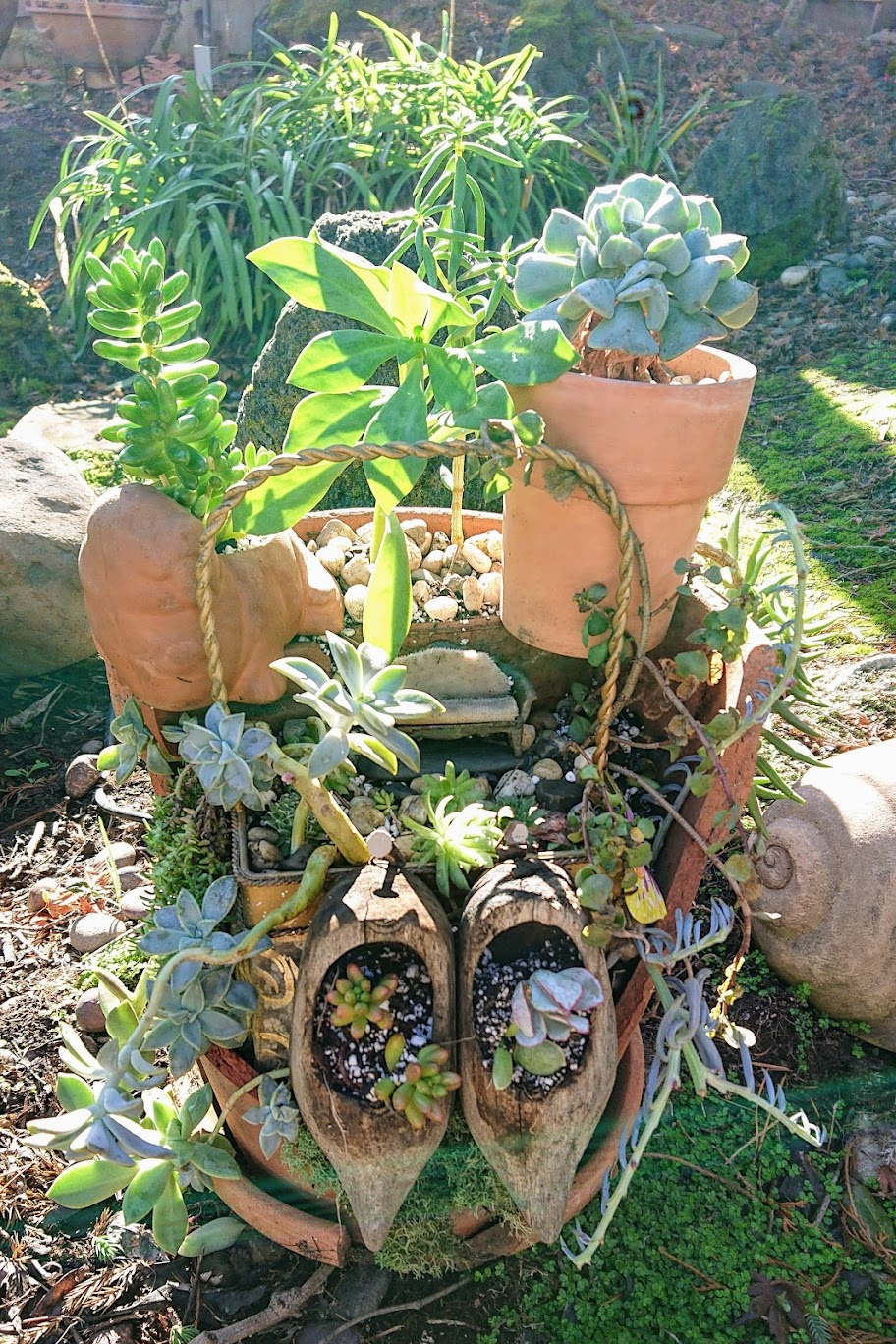 Front view of latest composition of the fairy garden. | FAFAFOOM STUDIO