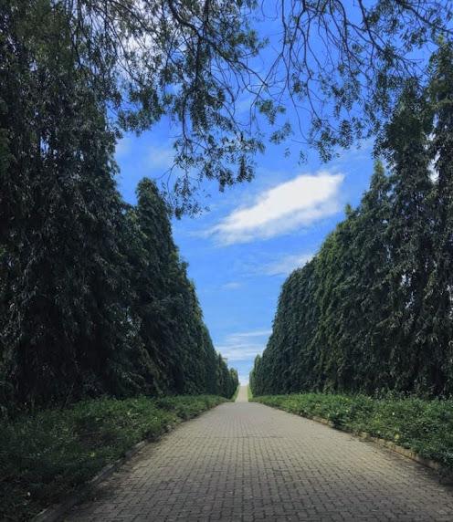 Dry Zone Botanic Gardens