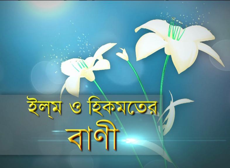 ইল্ম ও হিকমতের বাণী  Ep#52