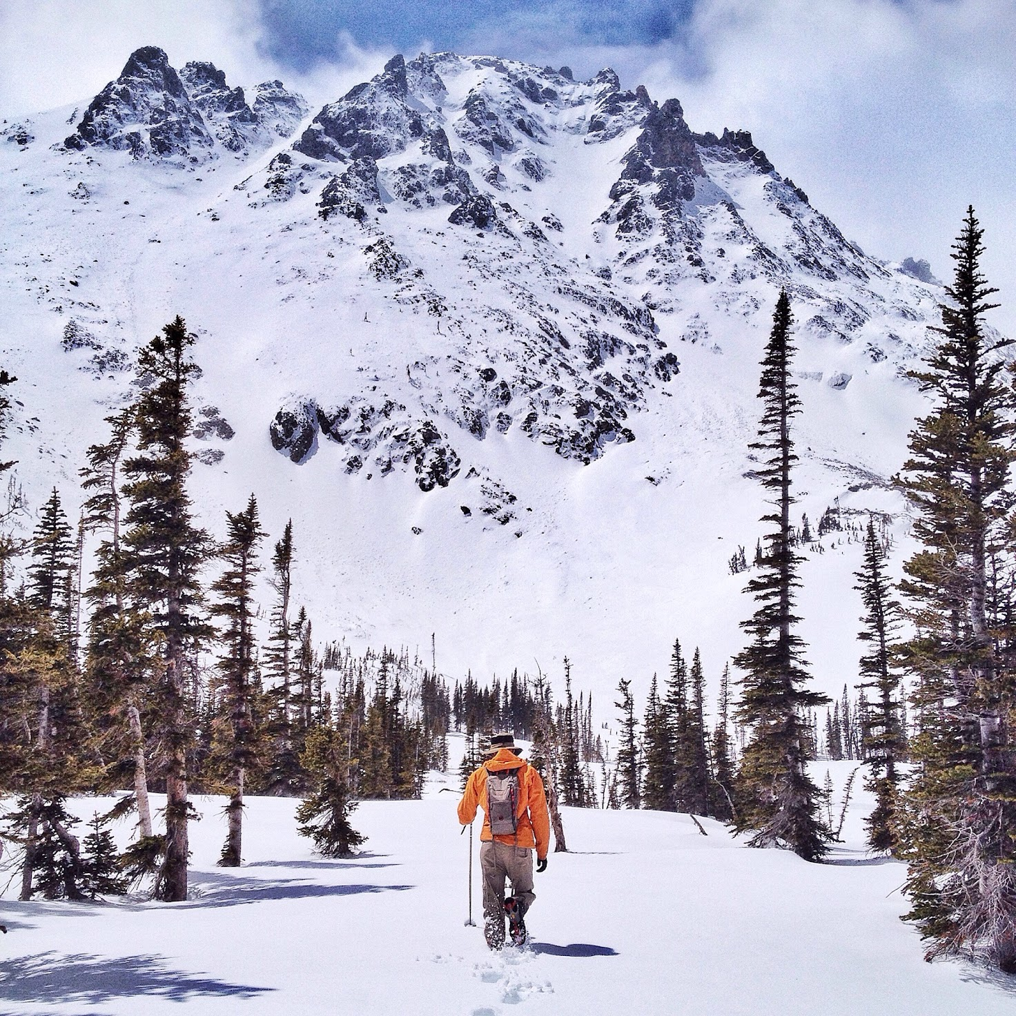 Snowshoeing in the Rocky Mountain National Park