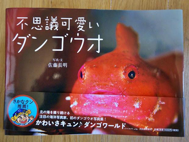 さかなクン推薦の一冊!『不思議可愛いダンゴウオ』