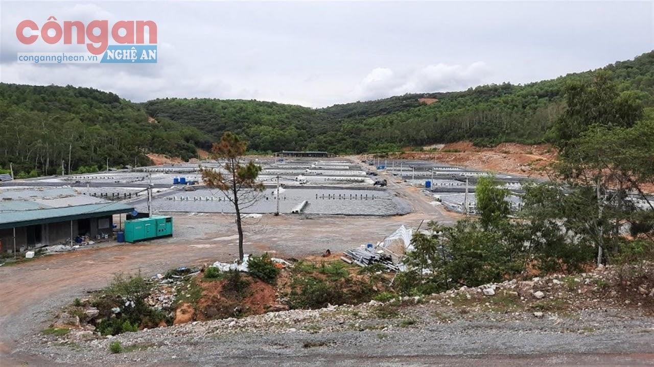 Hồ tôm được đầu tư xây dựng trên địa bàn xã Quỳnh Lập