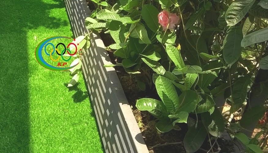 Độc đáo từ Cỏ nhựa nhân tạo từ sân vườn cho tới những vách ngăn