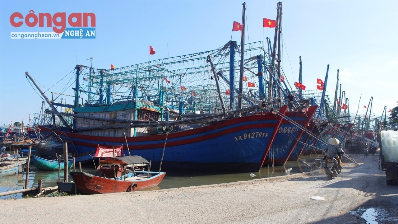 Chú trọng đầu tư tàu thuyền, trang thiết bị hiện đại  để nâng cao hiệu quả khai thác hải sản