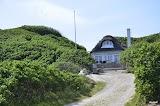 domki wśród róż