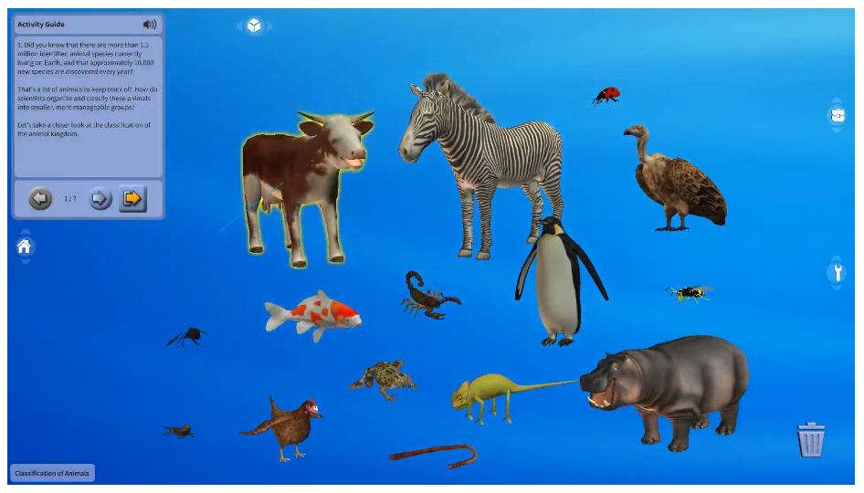 동물의 분류