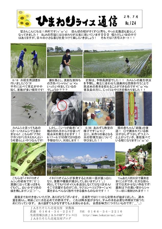 ひまわりライス通信 No.124・令和2年7月
