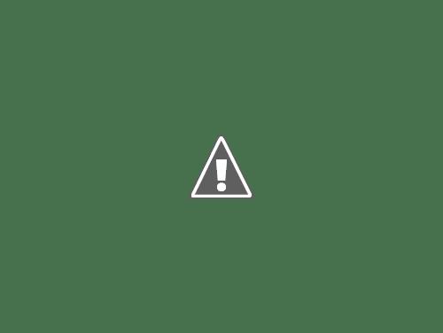 La cerveza Duff hecha en Mexicali.