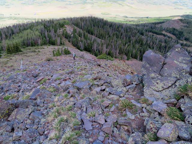 Descending Hilgard Mountain