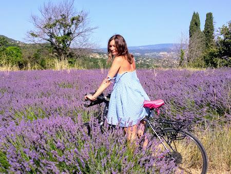 Велотур в Провансе