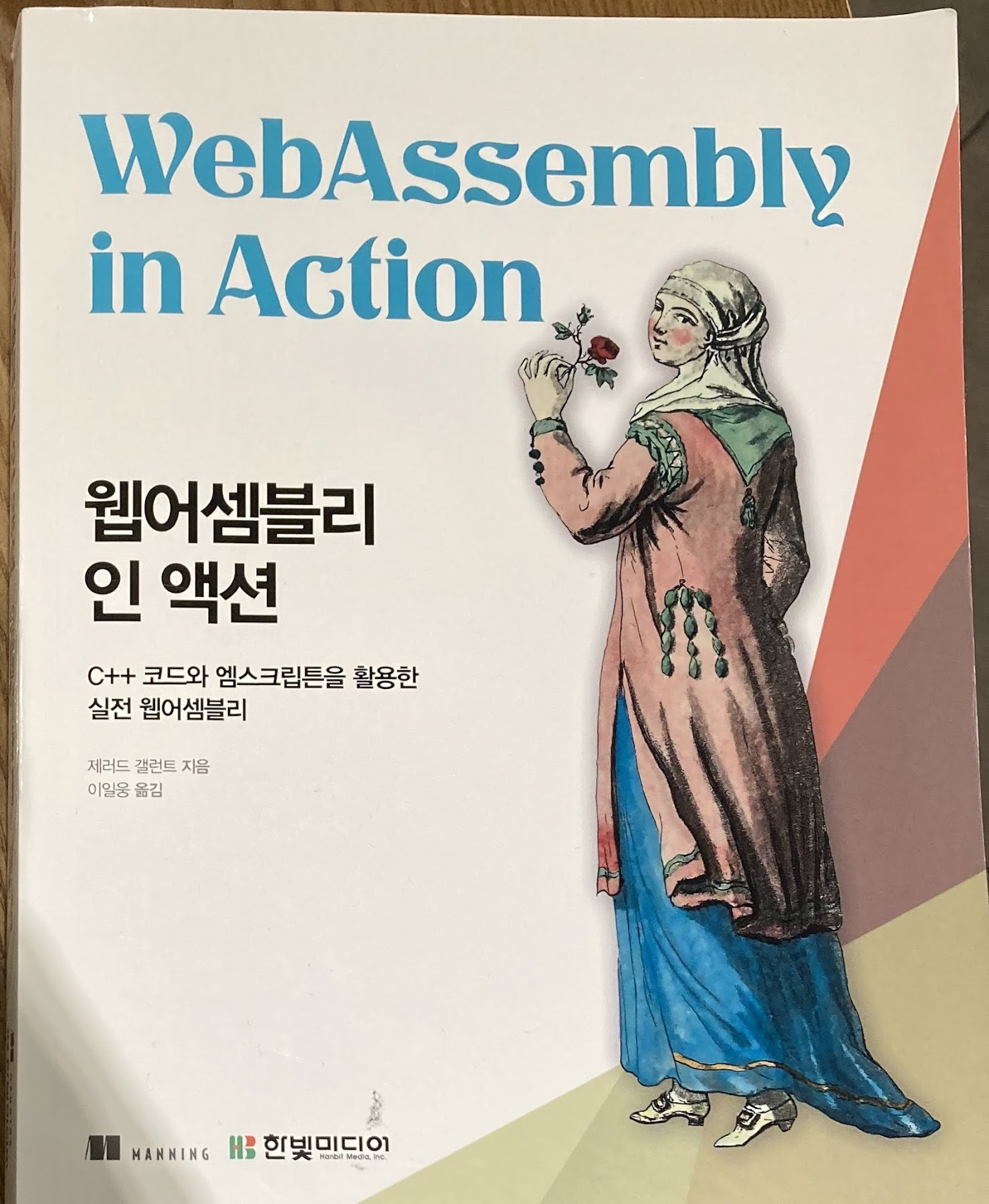 web_assembly_in_action-01